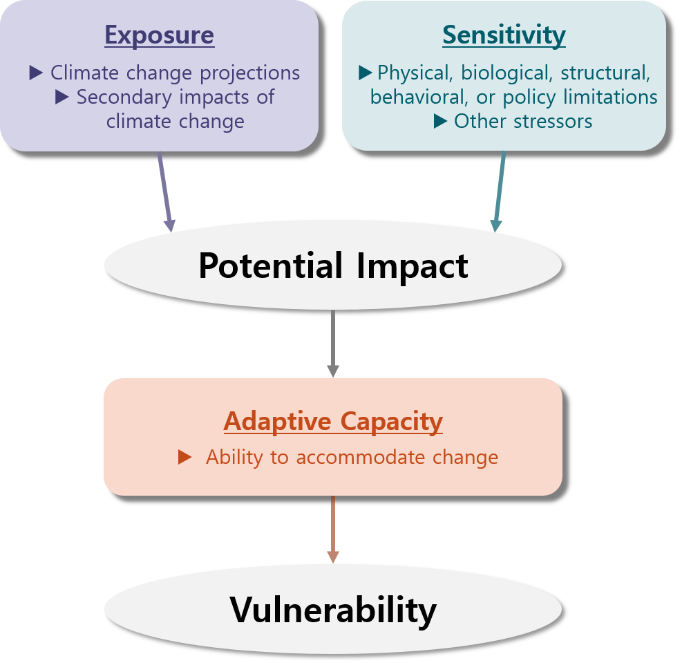 exposure sensitivity adaptability